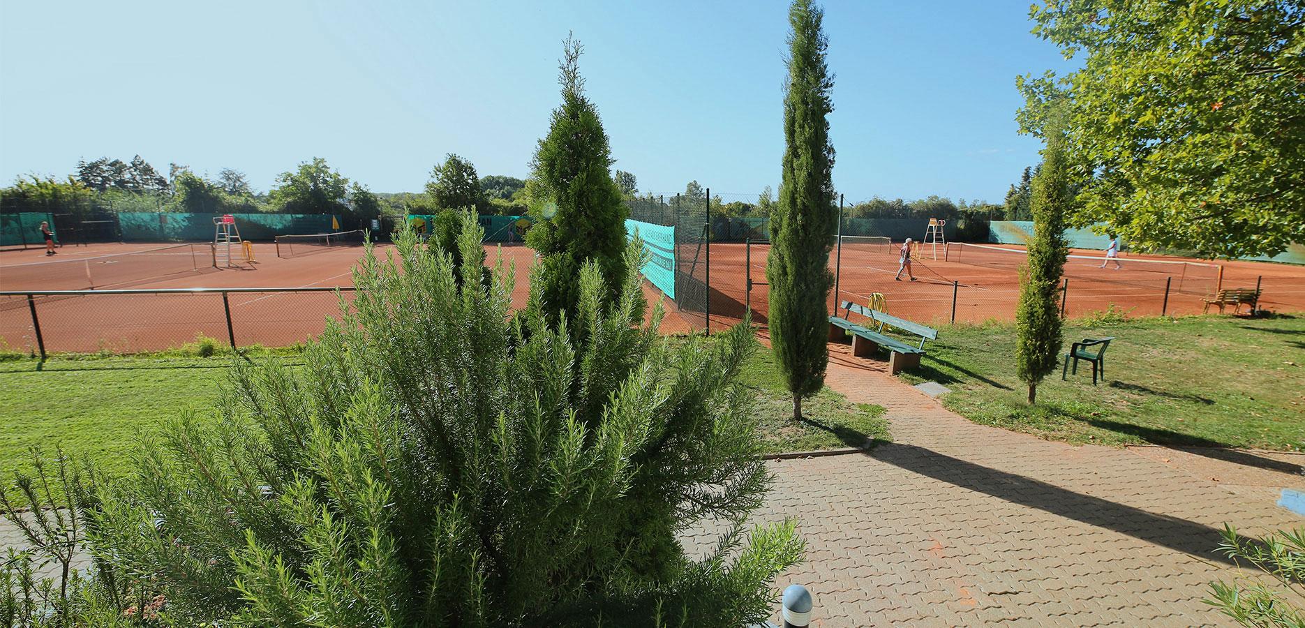 tennisclub-oppau-tennis-in-ludwigshafen-galerie-6