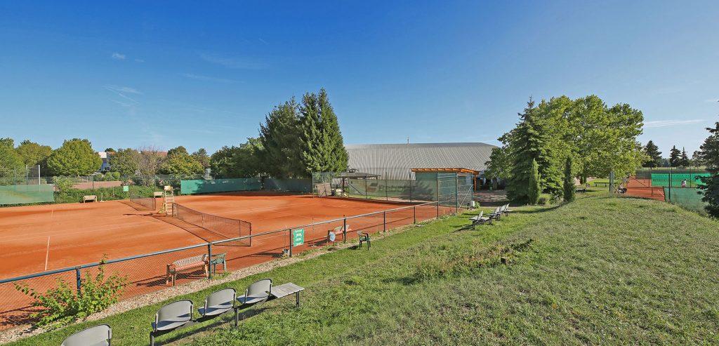 tennisclub-oppau-tennis-in-ludwigshafen-galerie-8