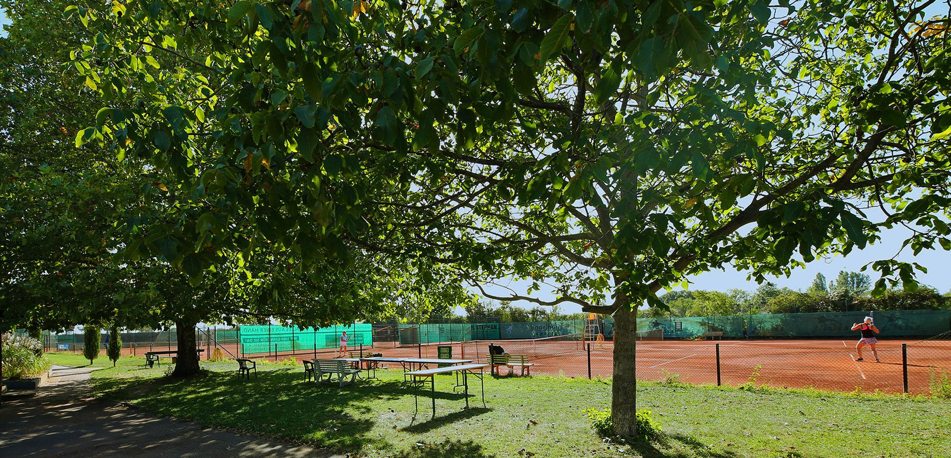 ennisclub-oppau-tennis-in-ludwigshafen-news