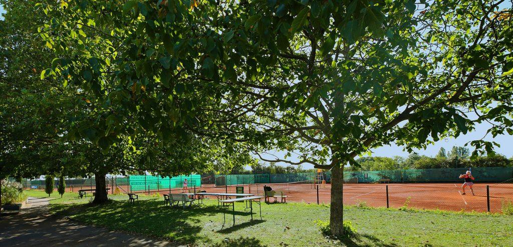 tennisclub-oppau-tennis-in-ludwigshafen-galerie-9