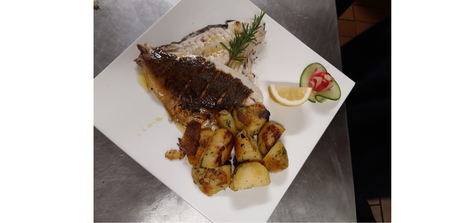 Fisch-2